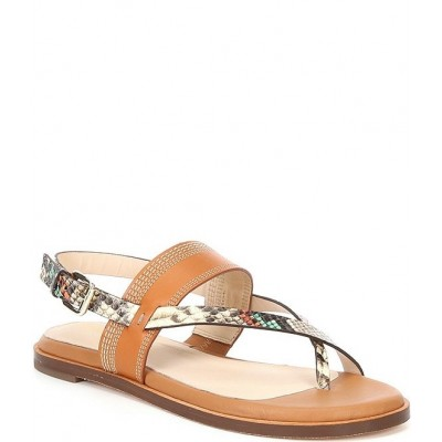 Women Anica Snake Print Leather Thong Sandals Cole Haan lifestyle RUBDWFT